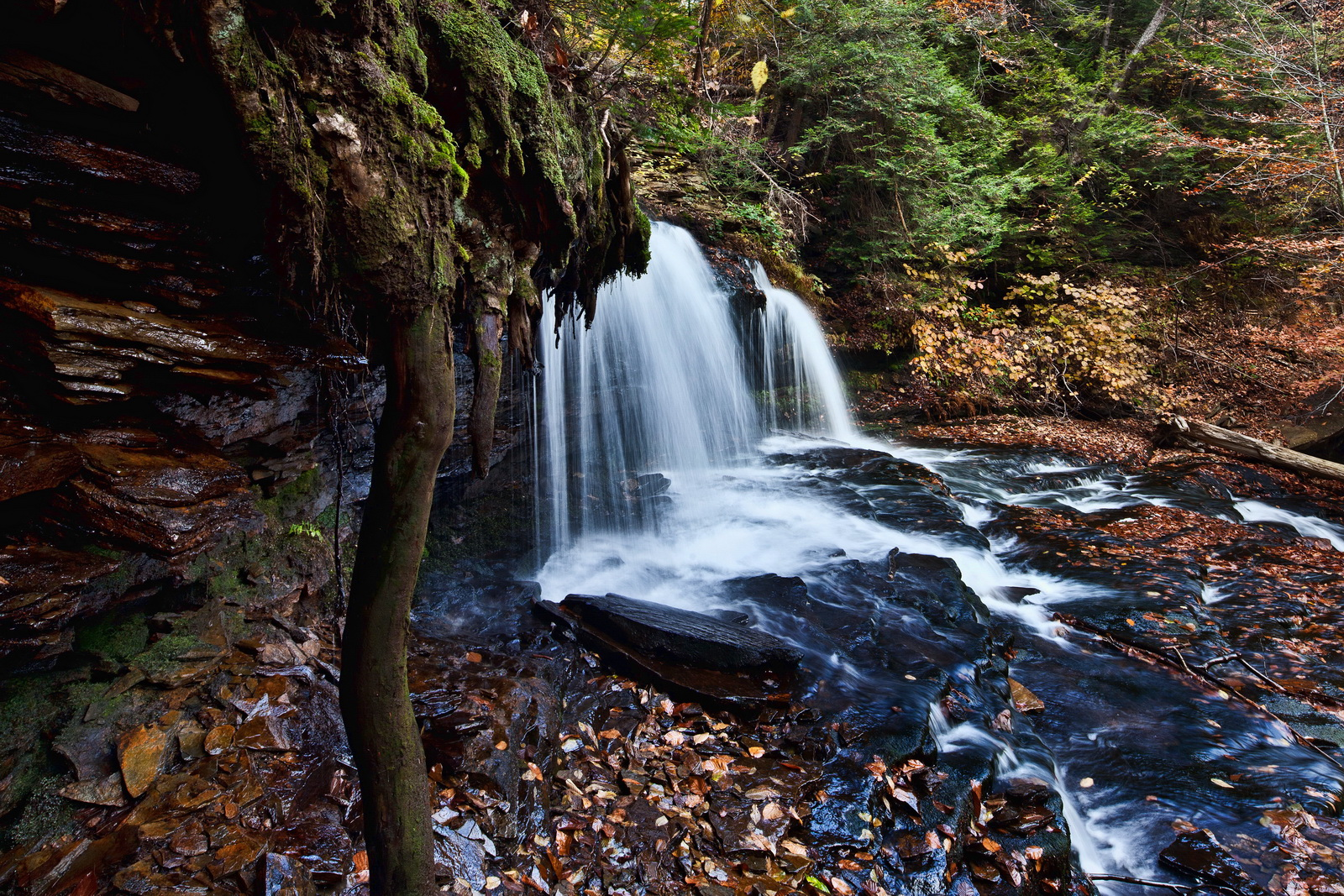 Ricketts Glen with Ben Prepelka