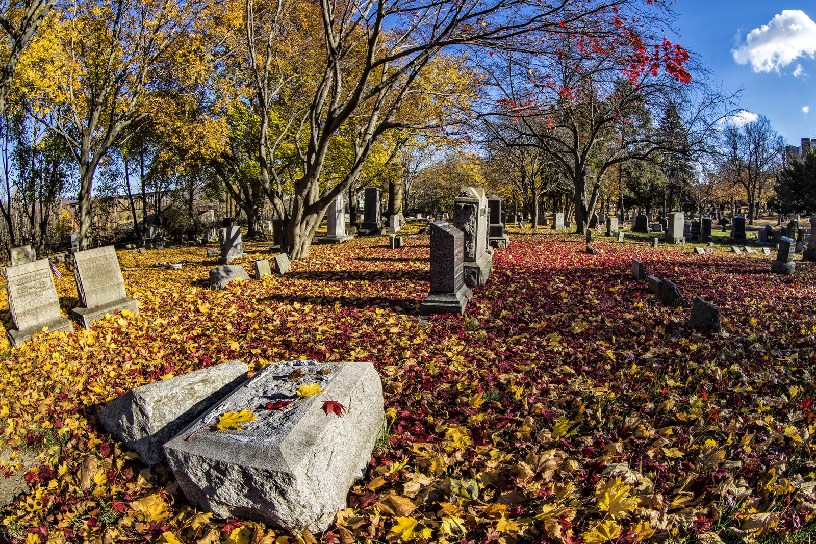 Hollenback Cemetery –Beautiful Memories